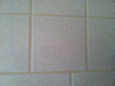 How to Paint a Tile Shower