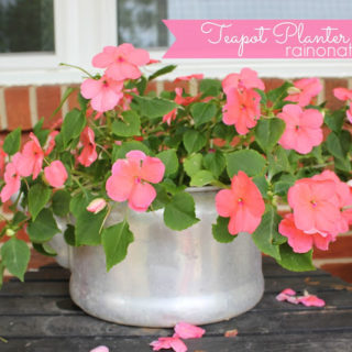 Teapot Planter: Flower Pot made out of an old Teapot