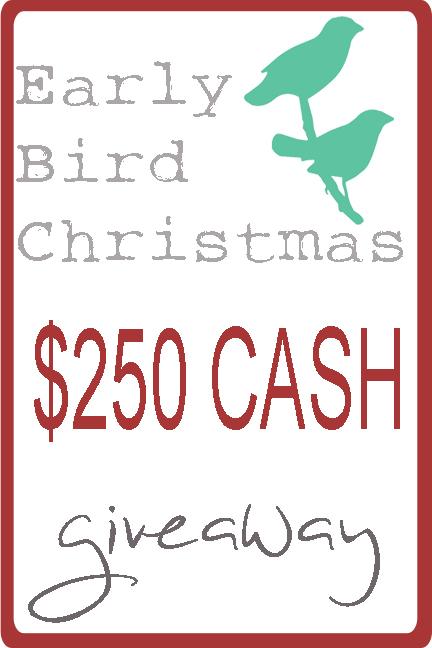 $250 CASH Giveaway {rainonatinroof.com}