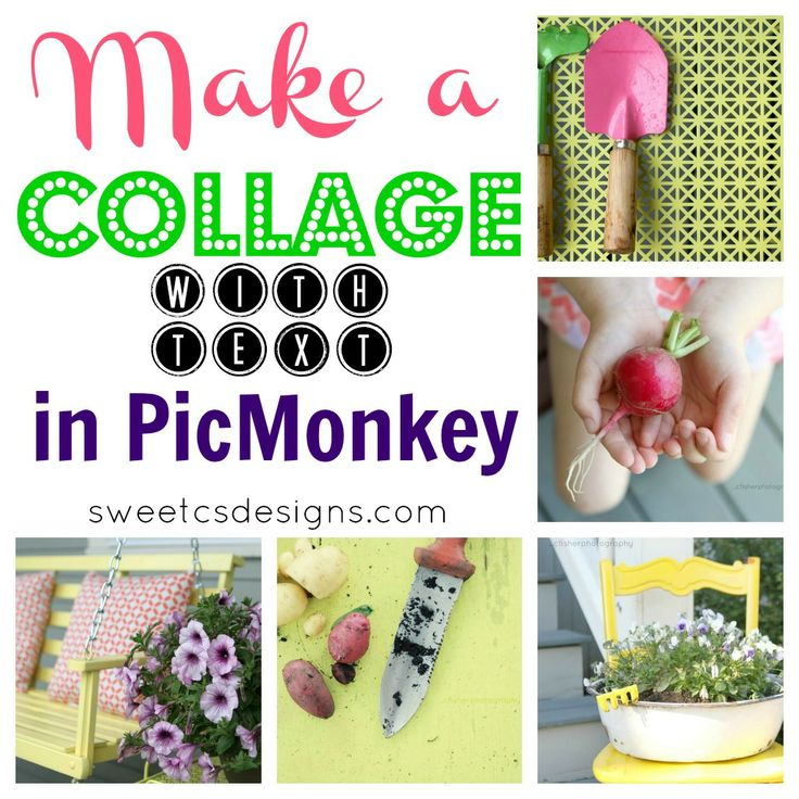 How to Use PicMonkey