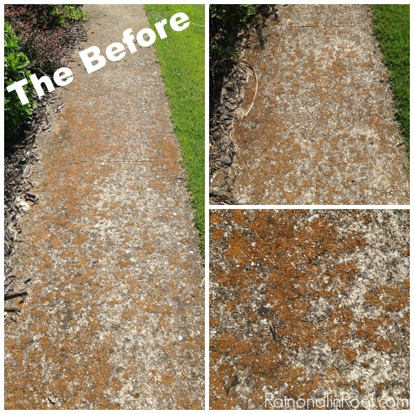 How to Clean A Sidewalk   Outdoor Cleaning Tips   Outdoor Cleaning Hacks   Exterior Cleaning