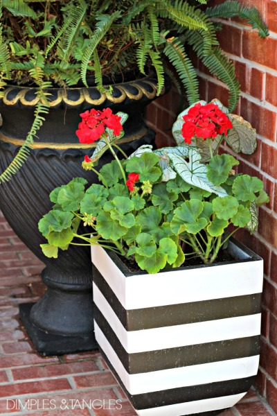 14 Black and White DIY Projects - Painted Black and White Planter Pots