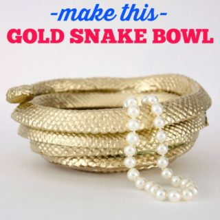 DIY Golden Snake Bowl