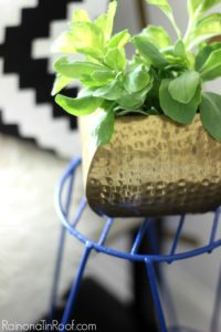 Lessons Learned from a Rusted Plant Stand