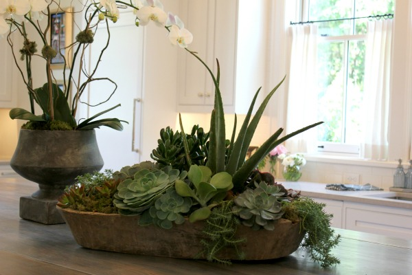 Plant a succulent garden in a dough bowl.