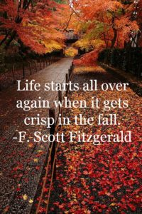 Here's to Octobers, Young Divorcees, New Beginnings, and Being Stronger Than You Ever Knew Possible.