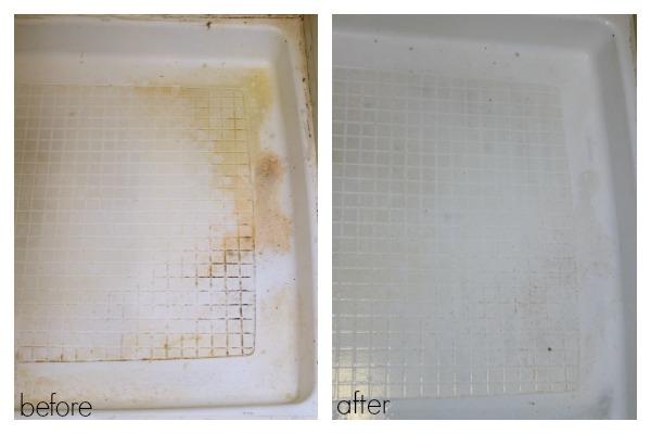 Steam Clean the Shower