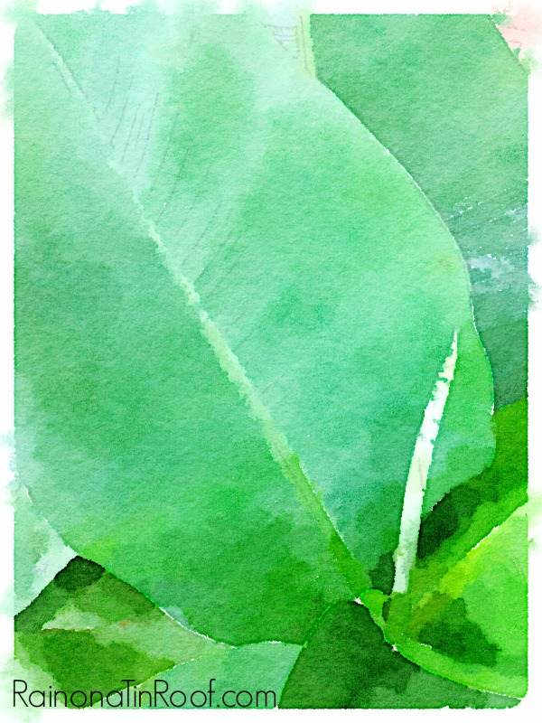 Decorating with Green: Banana Leaves Watercolor Printables - the printables are free! | Banana Leaves | Palm Prints