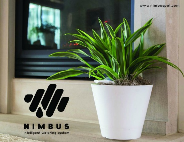 Gift Ideas for the Person Who Has It All - The Nimbus Pot, a self-watering planter!