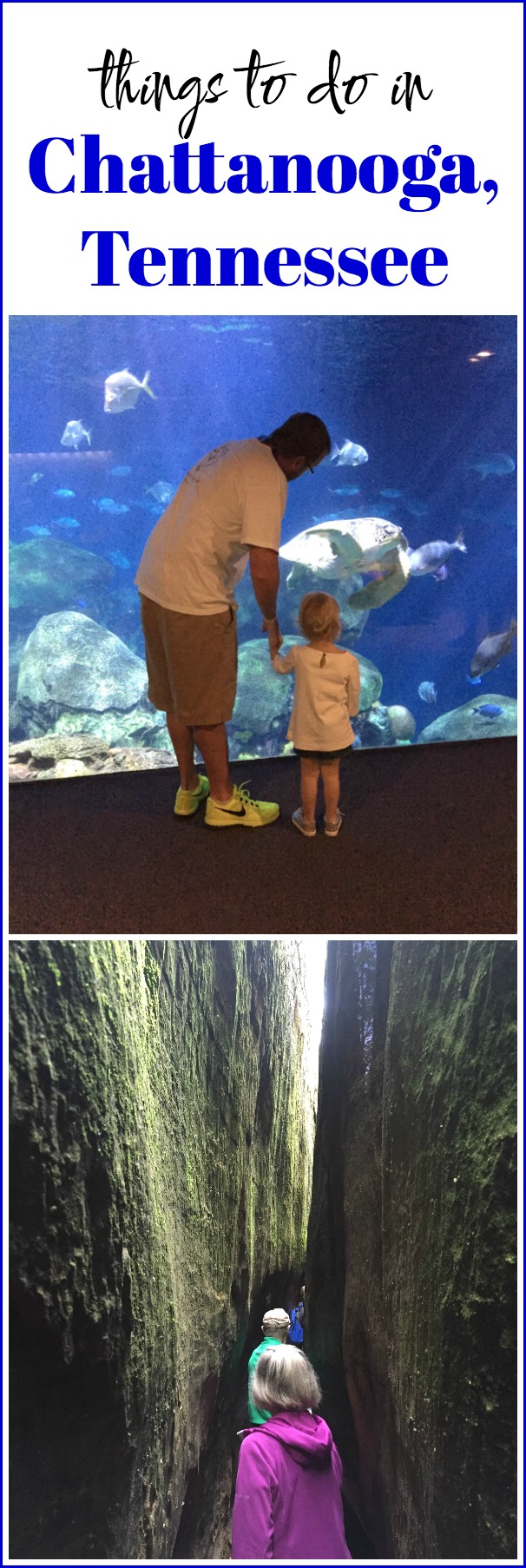 Chattanooga Tennessee Things to Do | Chattanooga Tennessee Restaurants | Things to Do in Chattanooga Tennessee with Kids
