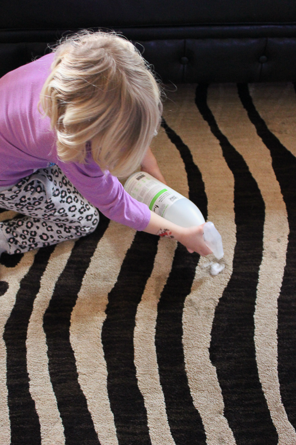 How to Clean Pet Urine From Carpet | How to Clean Pet Stains on Carpet | How to Remove Pet Odor | How to Remove Pet Stains from Carpet