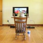 The Farm: Living Room Plans