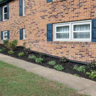 Our Front Yard Landscape Makeover