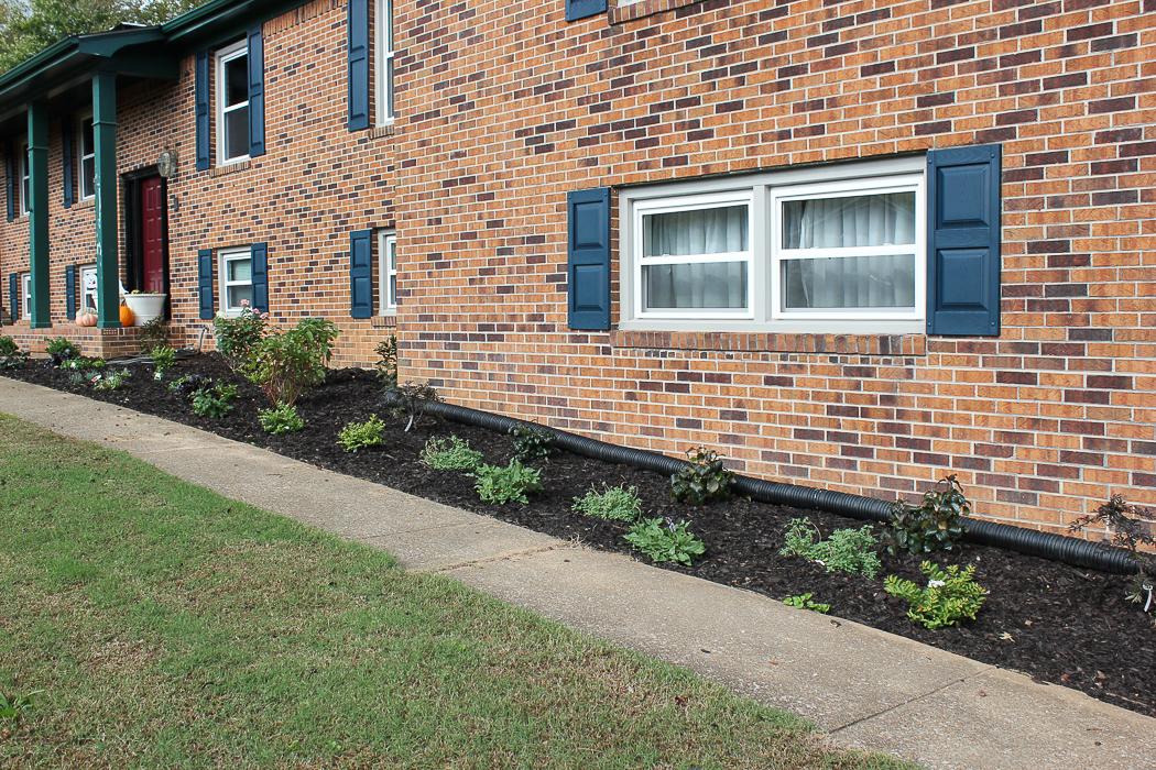 Front Yard Landscape Makeover