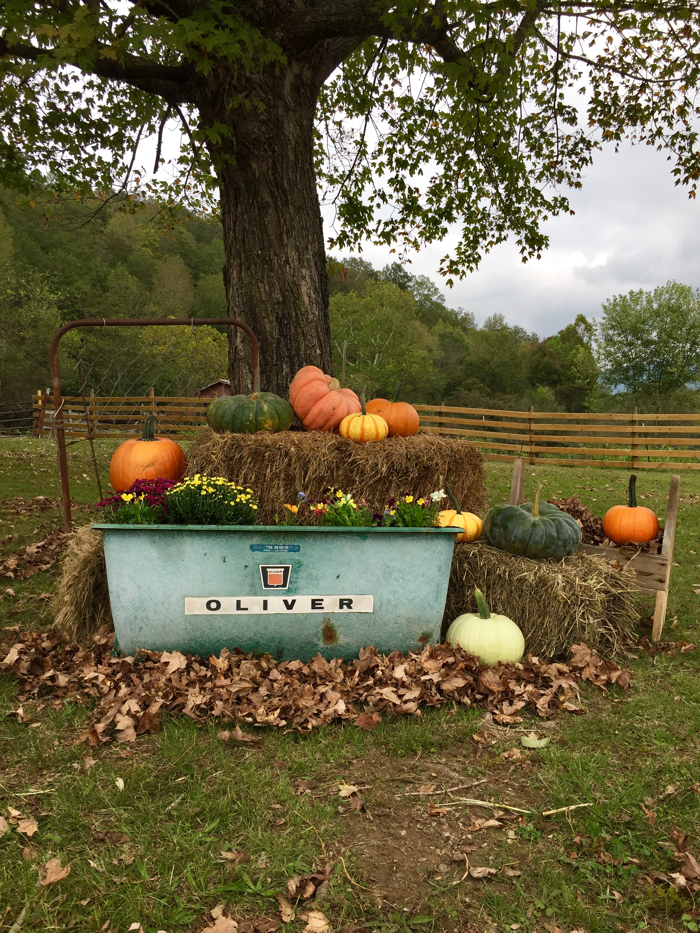Outdoor Fall Decorations at the Farm using materials found in the barns!