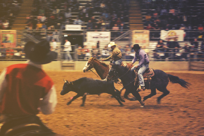 What the Circus is Getting for Christmas - Rodeo Tickets