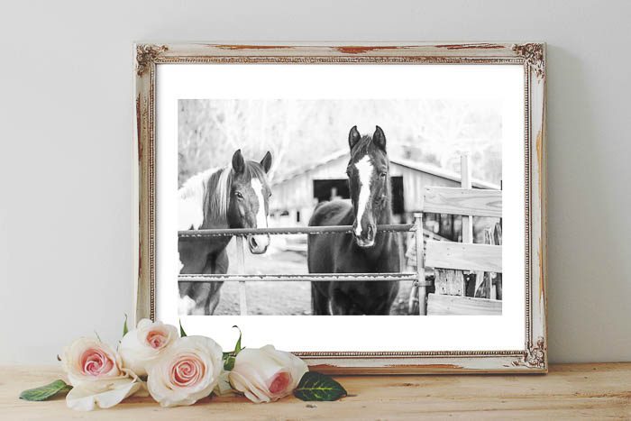 Free Printable Horse Art for your home - black and white, color and watercolor versions.