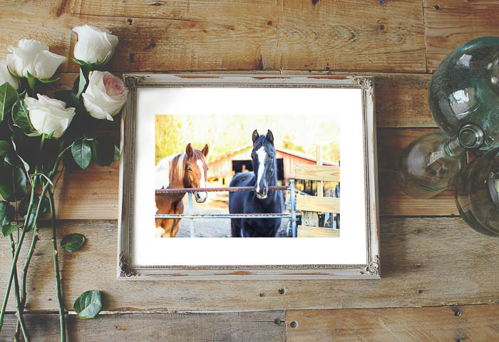 Free printable horse art for your home.
