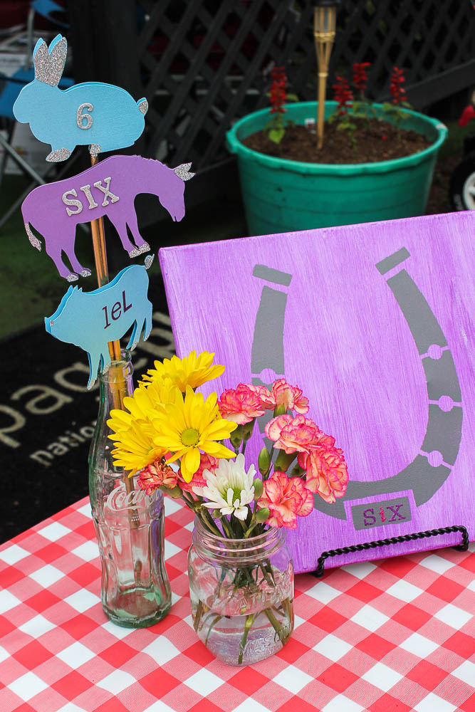 Farm Themed Birthday Party Decorations