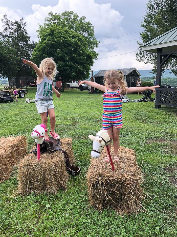 Farm Theme Party Games