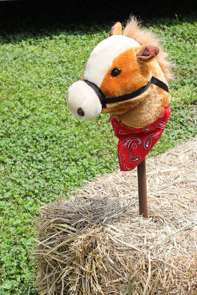 Farm Birthday Party Ideas - Hay Horses