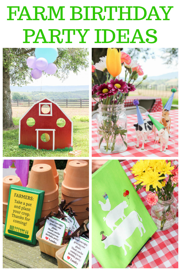 Farm Party Ideas - Decorations, Games and More