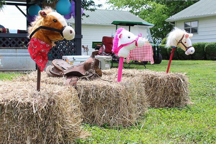 Farm Birthday Party - Games, Hay Horses