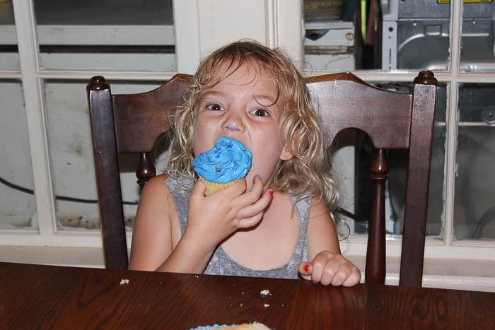 Farm Themed Birthday Party Cupcakes