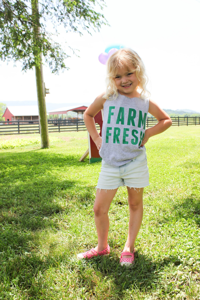 Farm birthday party ideas decor games and more farm birthday party stopboris Images