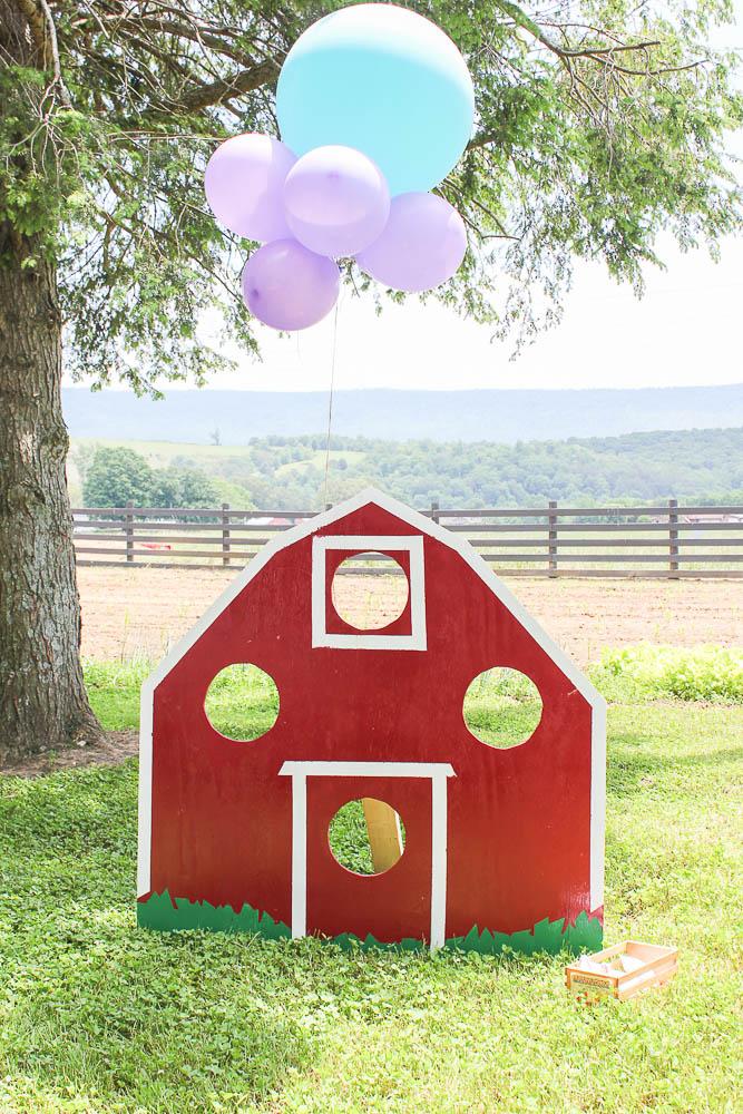 Farm Party - Games, Barn Bean Bag Toss