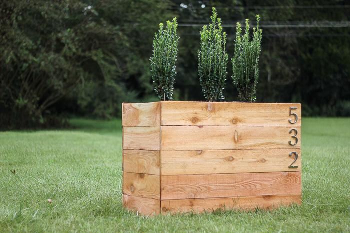 DIY Cedar Planter Box with Shrubs