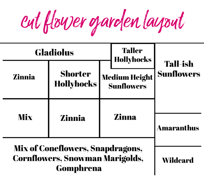 Cut Flower Garden Layout