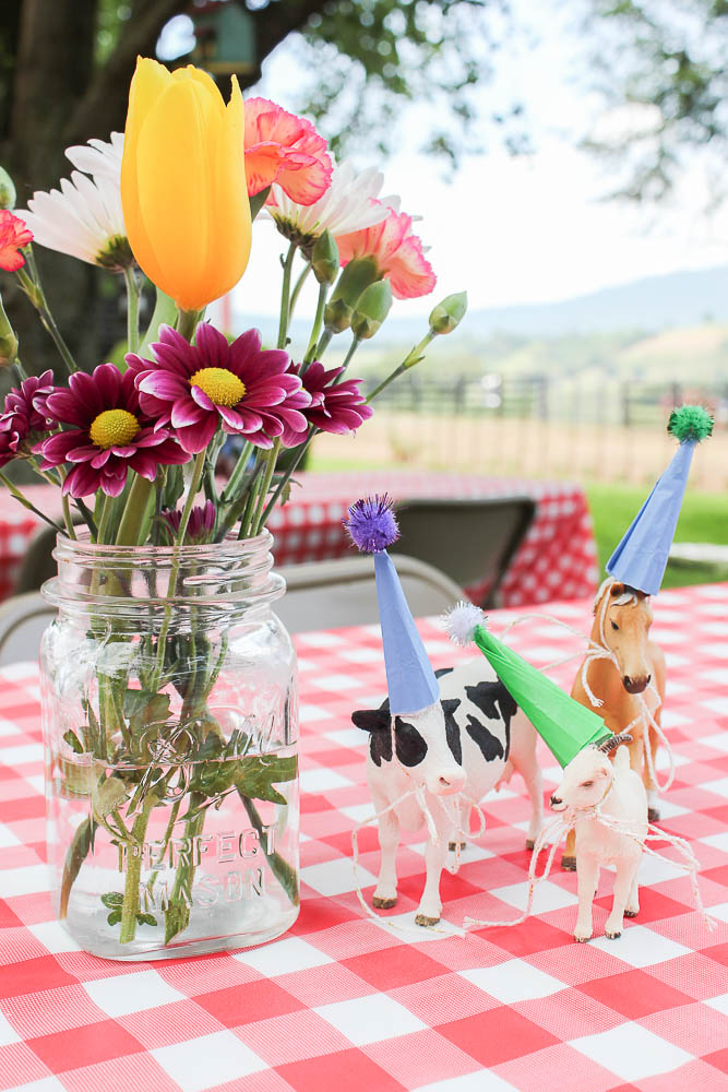 2c848dabcc Simple, Affordable and Easy Farm Birthday Party Ideas